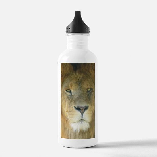 Lion journal Water Bottle