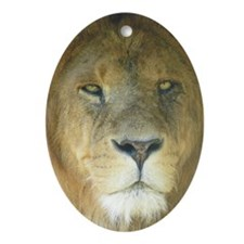 Lion journal Oval Ornament