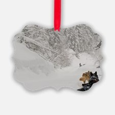 Tourists can mush their own sled/ Ornament