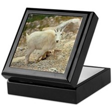 The goat antelope is more commonly kn Keepsake Box