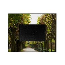 Austria - Bench and tree-lines walkw Picture Frame