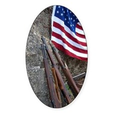 American flag and weapons, 66th Ann Decal