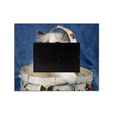 H Daystar Picture Frame