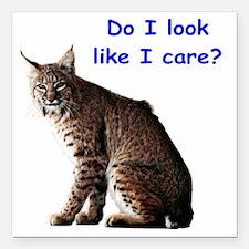 "do i look like i care bo Square Car Magnet 3"" x 3"""