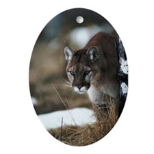 Mountain Lion Oval Ornament