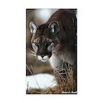Mountain Lion Rectangle Sticker