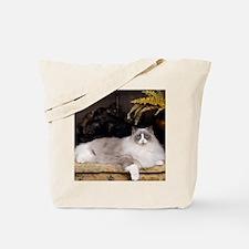 H Sammy fireplace Tote Bag