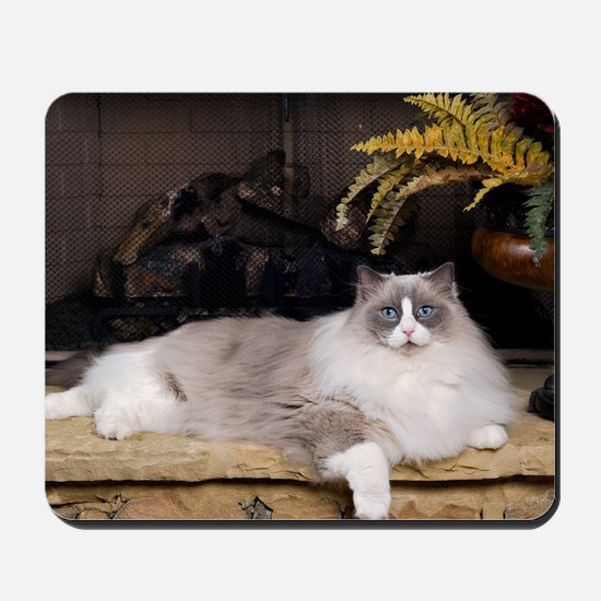 H Sammy fireplace Mousepad