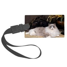 H Sammy fireplace Luggage Tag