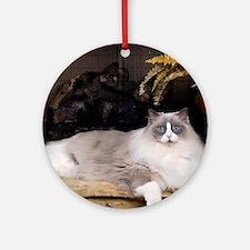 H Sammy fireplace Round Ornament