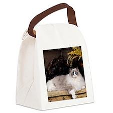 H Sammy fireplace Canvas Lunch Bag