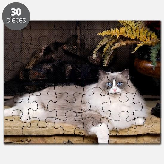 H Sammy fireplace Puzzle