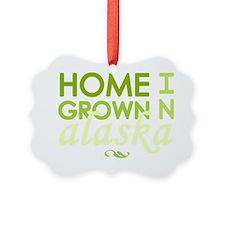 Home grown alaska light Ornament