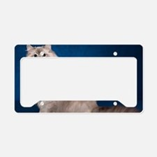 H Cover License Plate Holder