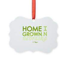 Home grown nebraska light Ornament