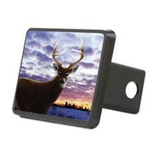 beech_bagFRNT Hitch Cover
