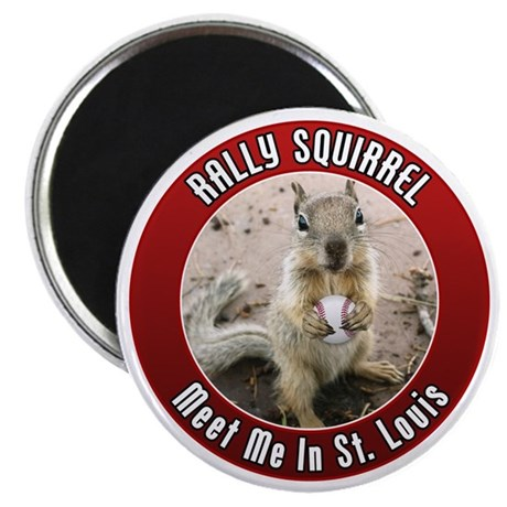 squirrel_st-louis_01 Magnet