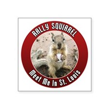"squirrel_st-louis_01 Square Sticker 3"" x 3"""
