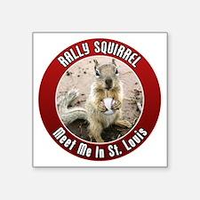 "squirrel_st-louis_01 Square Sticker 3"" x 3"""