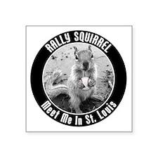 """squirrel_st-louis_03_smalle Square Sticker 3"""" x 3"""""""