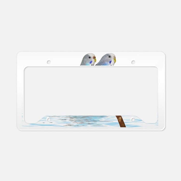 2 blue parakeets License Plate Holder