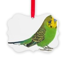green parakeet Ornament