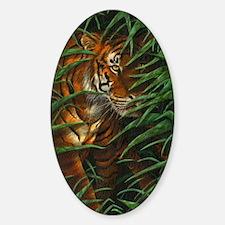 Tiger Stalking (low res) Decal