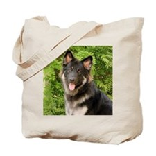 colby-wildeshots-052111 491b Tote Bag