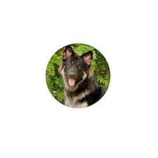 colby-wildeshots-052111 491b Mini Button