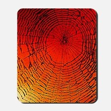 Spider Web Art Mousepad