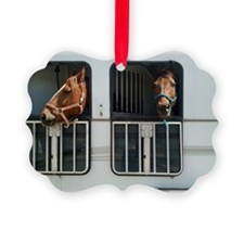 Bo and Bailey go for a ride2 Ornament