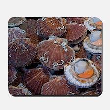 Coquilles St Jacques, Trouville fish mar Mousepad