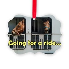 Bo and Bailey go for a ride Ornament