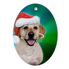 yellow lab-santa-blue green bground Oval Ornament