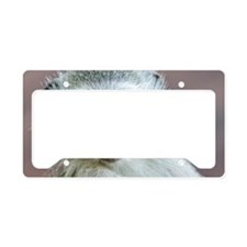 Vervet Monkey License Plate Holder