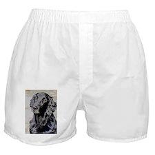 stella2 Boxer Shorts