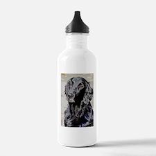 stella2 Water Bottle