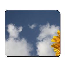A sunflower in a sunflower field in Loir Mousepad