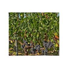 A vine with ripe Merlot grape bunche Throw Blanket