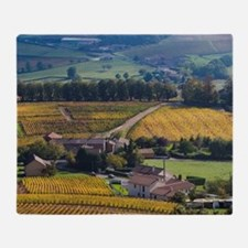 Chateau of Pierreclos and vineyards  Throw Blanket