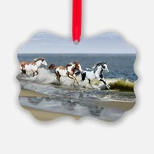laptop_skin_Painted Ocean_R copy Ornament