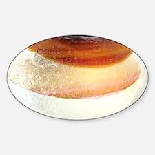 Iced Doughnut Decal