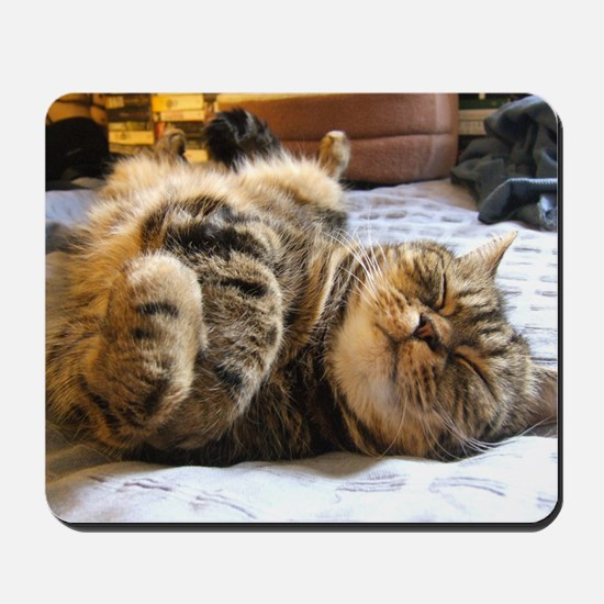 calendar happycat 01 jan Mousepad