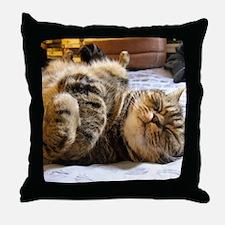 calendar happycat 01 jan Throw Pillow