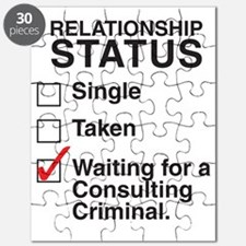 consulting_criminal_CP Puzzle