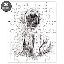 Mastiff Puppy Sitting Puzzle