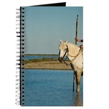 Camargue. Gypsy horseman cools his horse i Journal