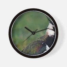 Vanellus vanellus Wall Clock