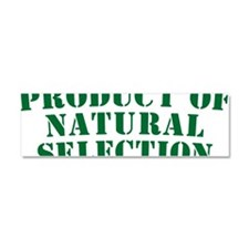 Product Of Natural Selection G Car Magnet 10 x 3