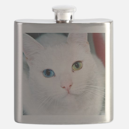 cat 1 Flask